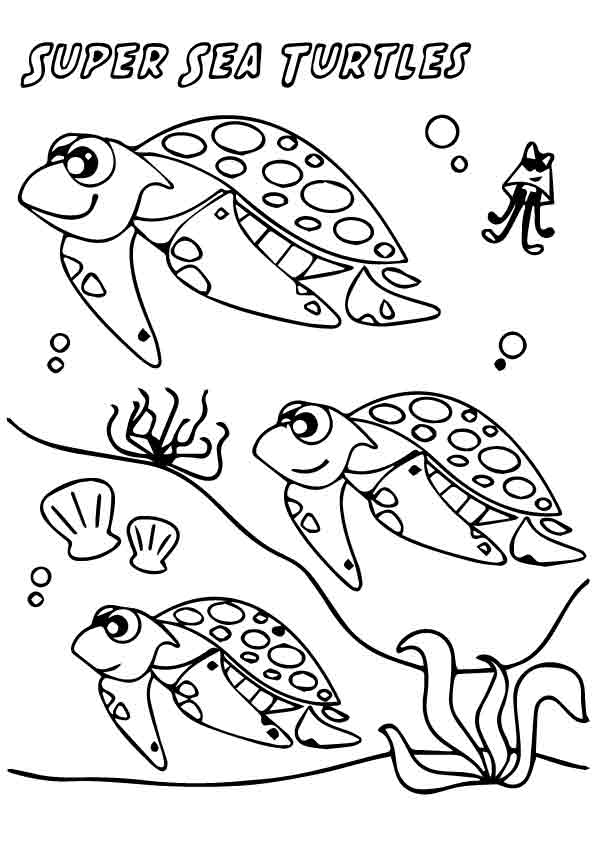 tortoise-and-turtle-coloring-page-0016-q2
