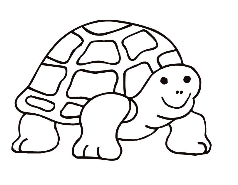 tortoise-and-turtle-coloring-page-0020-q1