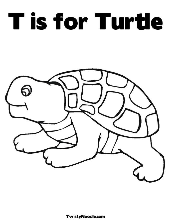 tortoise-and-turtle-coloring-page-0024-q1