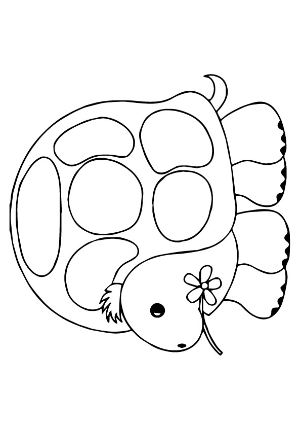 tortoise-and-turtle-coloring-page-0026-q2