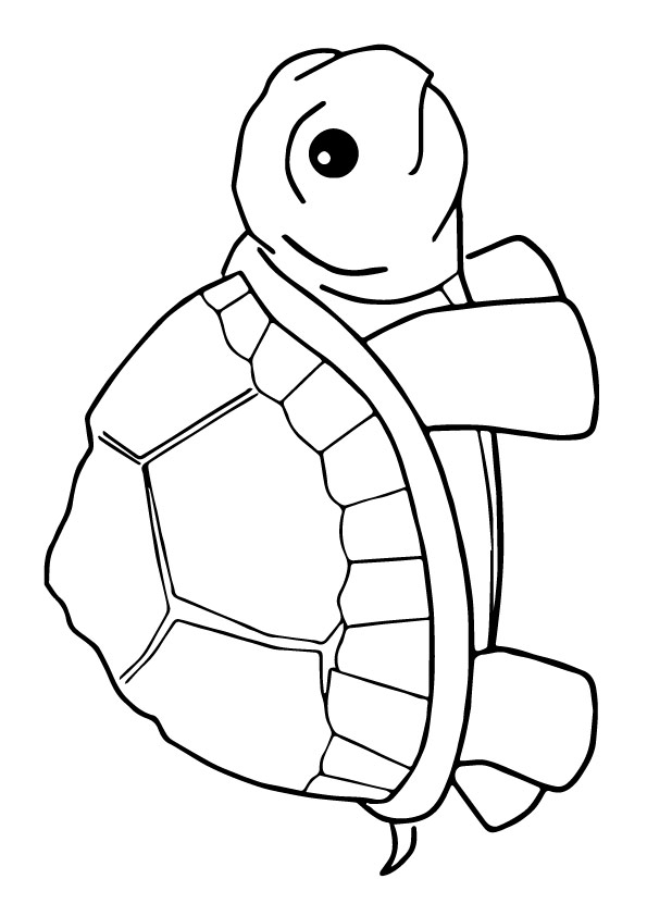 tortoise-and-turtle-coloring-page-0032-q2