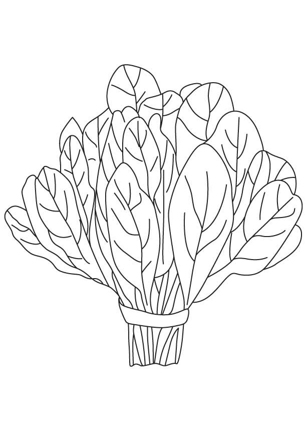 vegetable-coloring-page-0027-q1