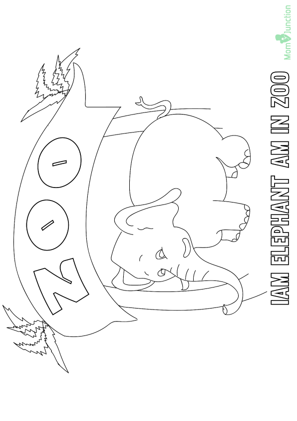 zoo-coloring-page-0009-q2