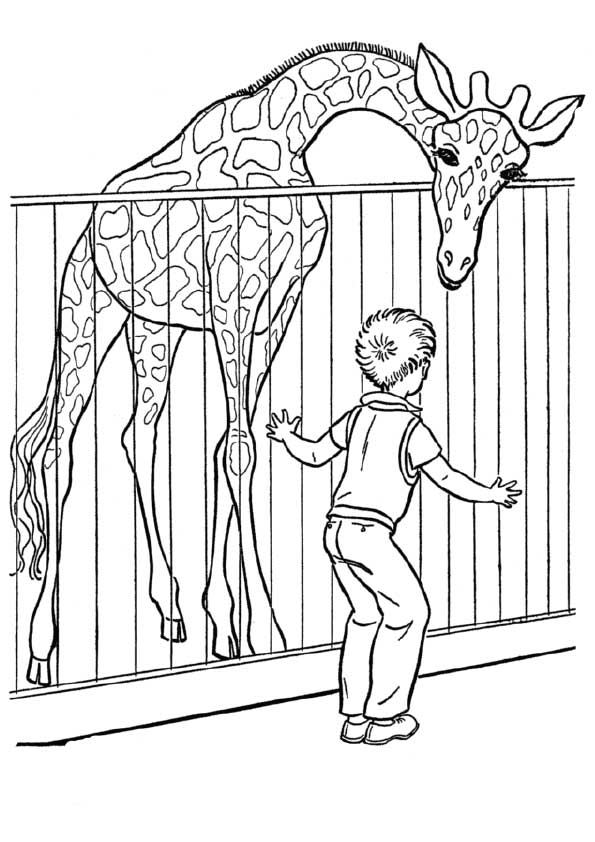 zoo-coloring-page-0021-q2