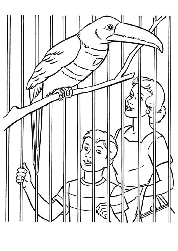 zoo-coloring-page-0022-q2